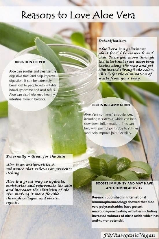 7 Amazing Benefits And Uses For Aloe Vera recommend