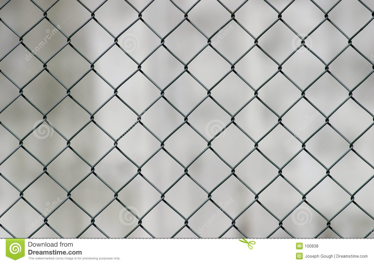 White Chicken Wire Fencing.6 Decorated Chain Link Fences Curbly ...