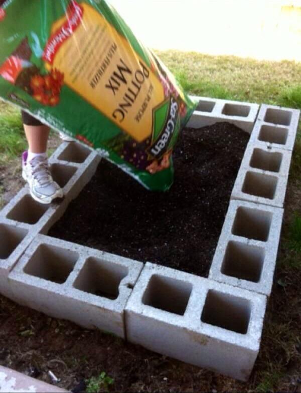 Easy DIY Raised Garden Bed Trusper
