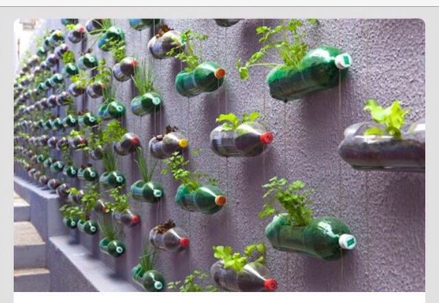 👍❤️Recycled Bottle Wall Garden❤️🌟
