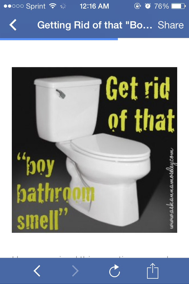 Get Rid Of That Boy Bathroom Smell Trusper