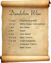How to make dandelion wine   Food   The Guardian