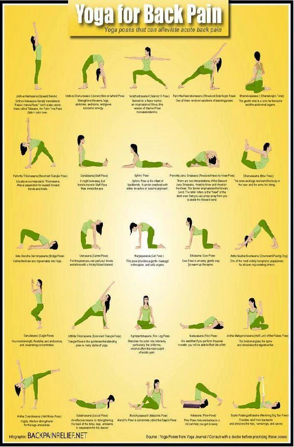 yoga for back pain | Trusper