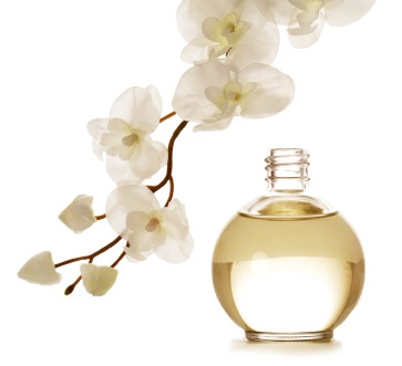 Top 8⃣ Perfume Tips - Super Useful And Such A Good Read!