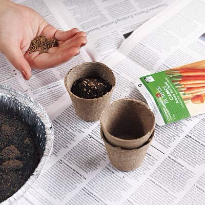10 uses of leftover coffee grounds trusper - Coffee grounds six practical ways to reuse them ...