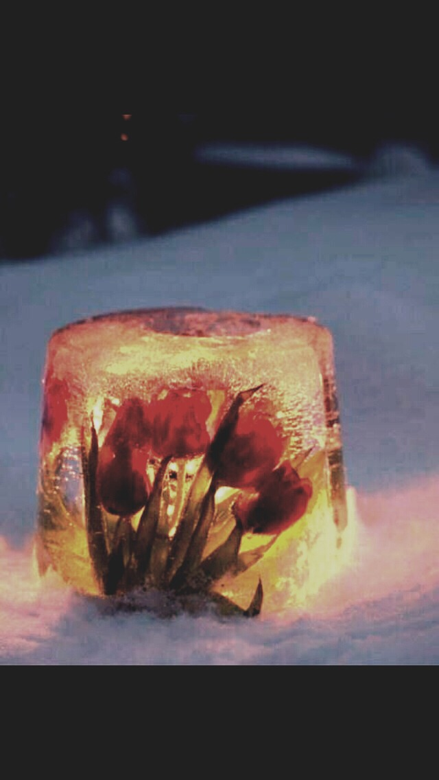 Frozen Flower Candle