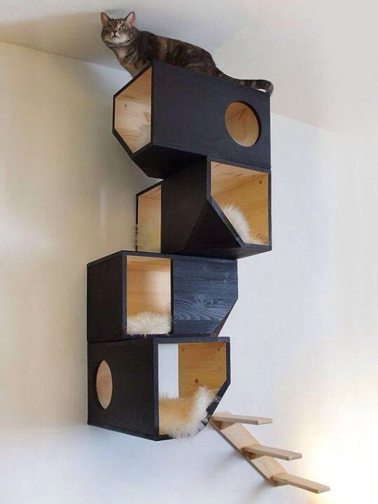 Awesome Cat House Ideas