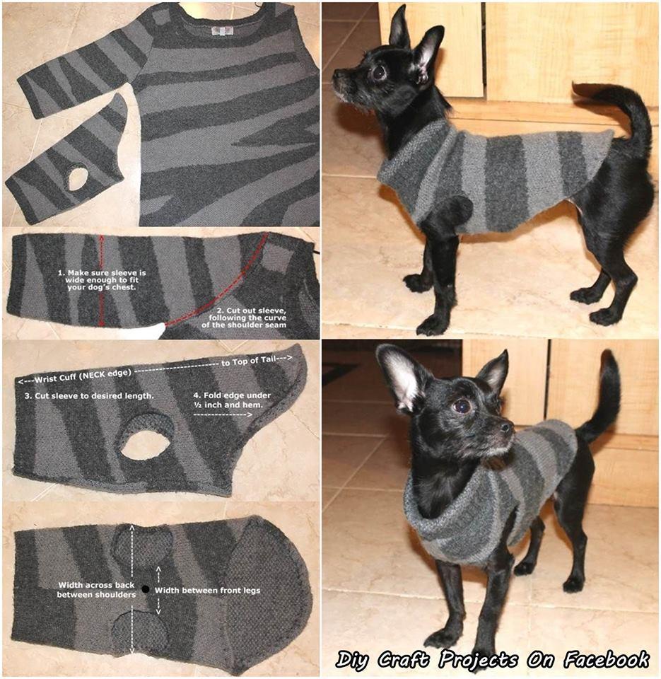 Как сшить одежду для собак своими руками фото