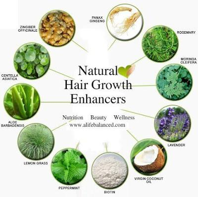 Foods To Increase Hair Growth Trusper