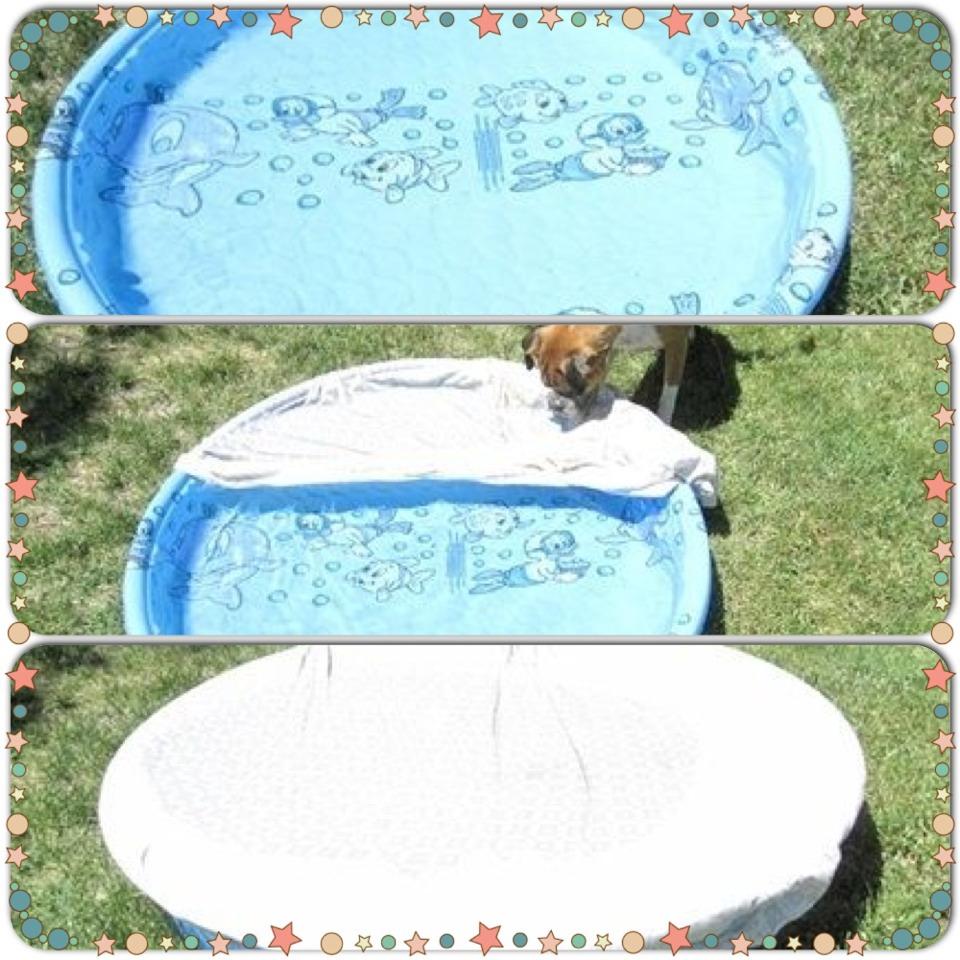 How To Keep Your Kiddie Pool Clean Trusper