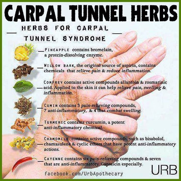 Carpal Tunnel Herbs | Trusper