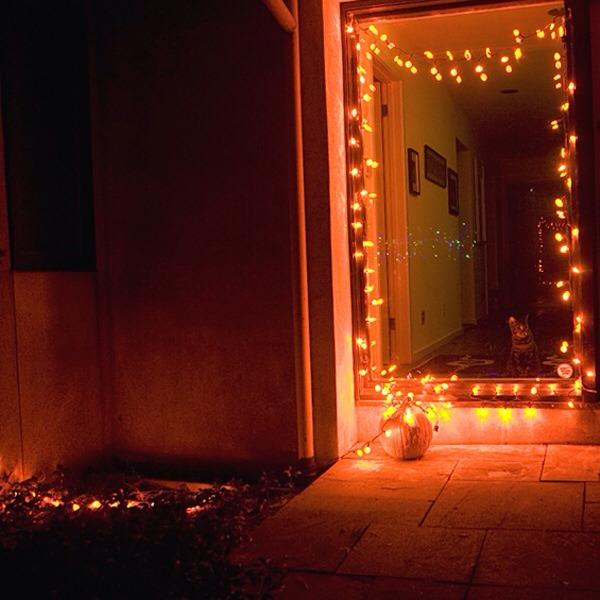 String Lights Storage : String Light Storage Trusper