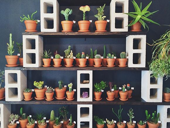 16 cinder block diys that will make any home on point for Cinder block plant shelf