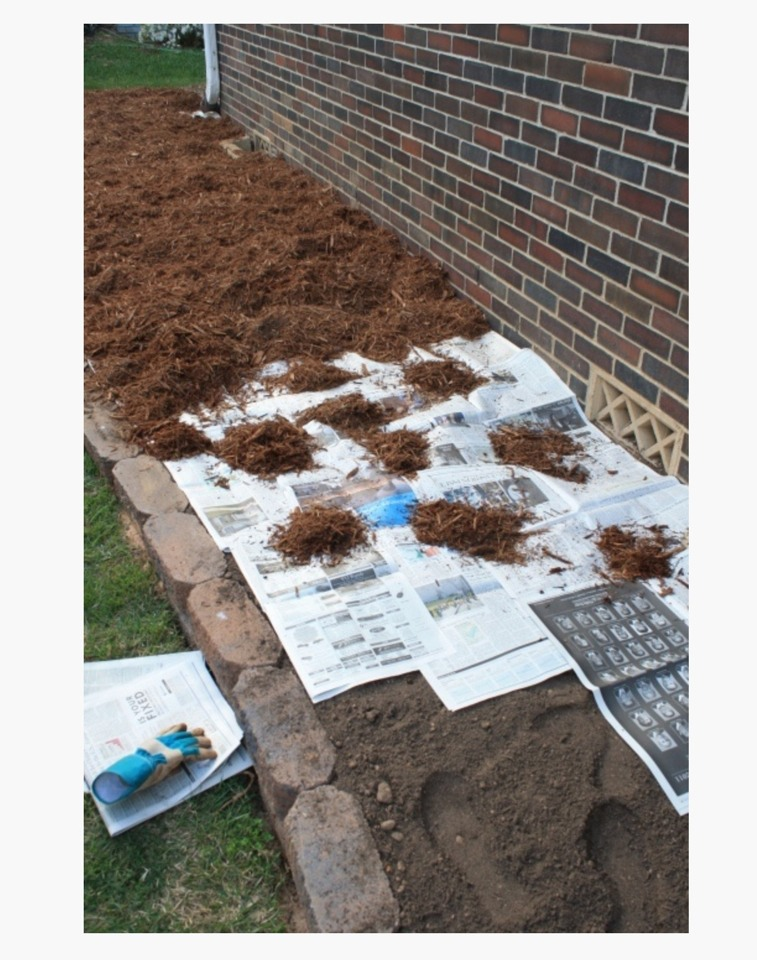 Easy Way To Keep Weeds From Growing In Your Garden