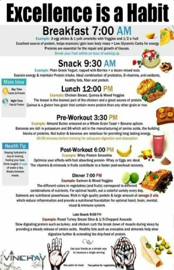 Wanna Lose Weight? Follow This Daily Routine.   Trusper