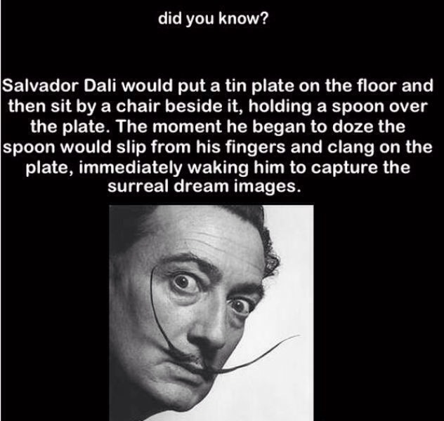 Did you know somewhat useless and fun facts trusper