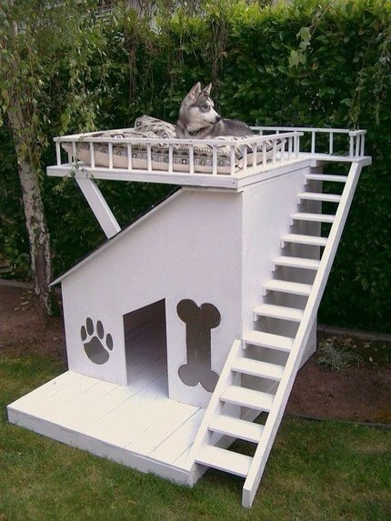 Outdoor Dog House Ideas