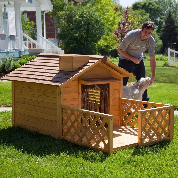 8 Backyard Ideas To Delight Your Dog: Outdoor Dog House Ideas