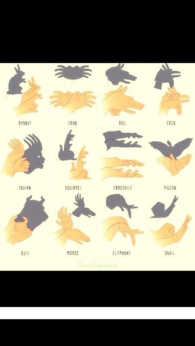 Best Hand Shadows