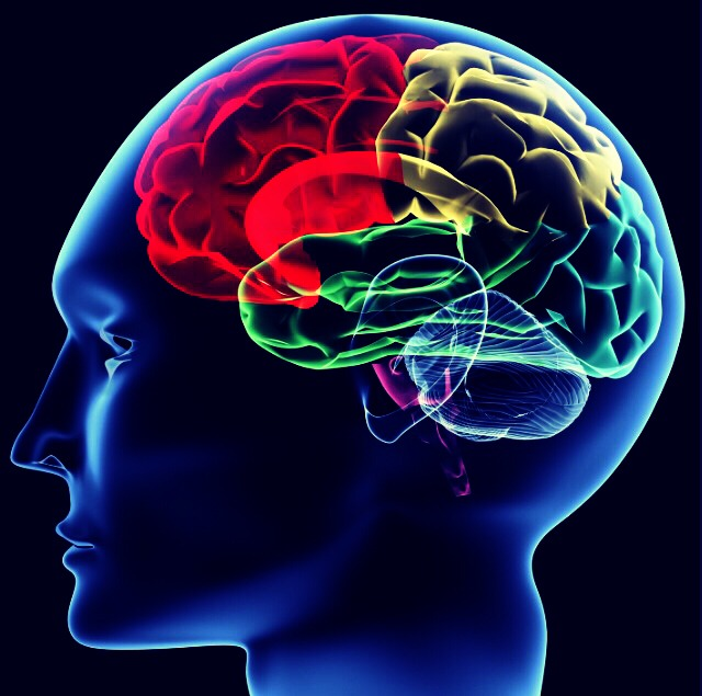 Improve Memory Ability