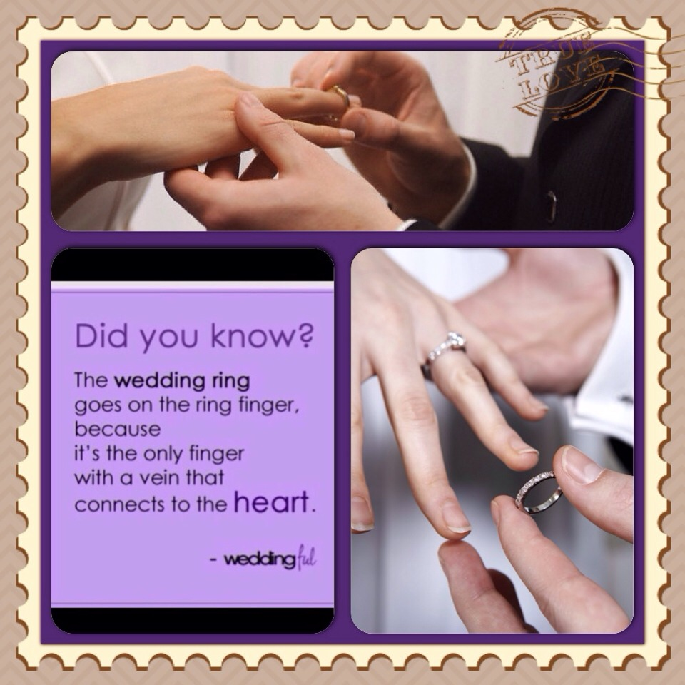 Did You Know Gt Why The Wedding Ring Goes On The Ring Finger I Did Not