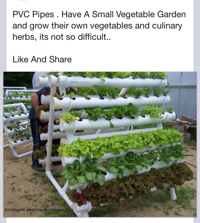 Diy Stacked Herb Garden: PVC Pipe Vegetable Garden!!! 🌾