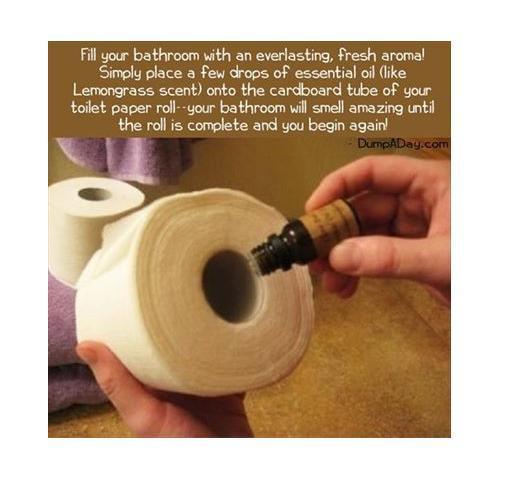 Make Your Bathroom Smell Nice Trusper