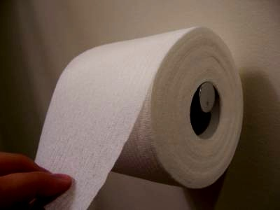 A great way to keep your bathroom smelling fresh trusper - Scented toilet paper roll holder ...