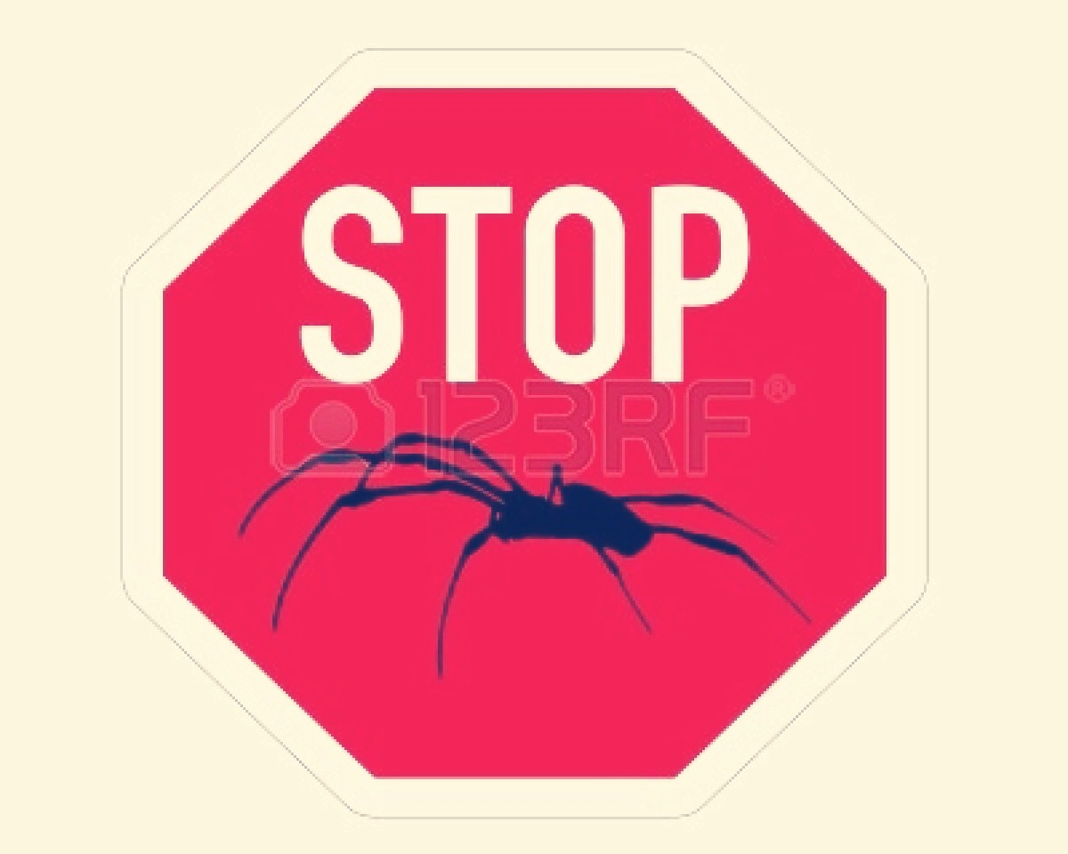how to stop spiders coming in your house trusper