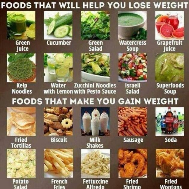 diet makes you gain weight Since every weight-loss attempt includes the loss of both fat and muscle (but what's regained is only fat), dieters burn even fewer calories, which makes it easier to gain weight and results in a.