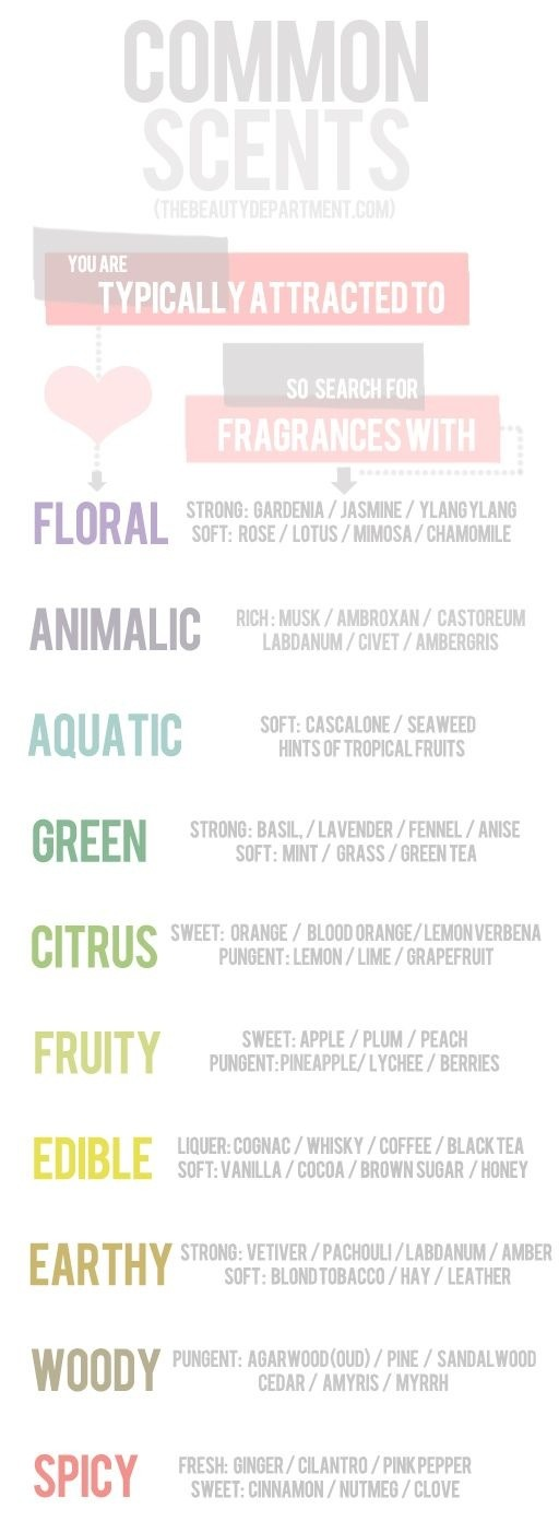 Common Scents You Are Probably Attracted To!!