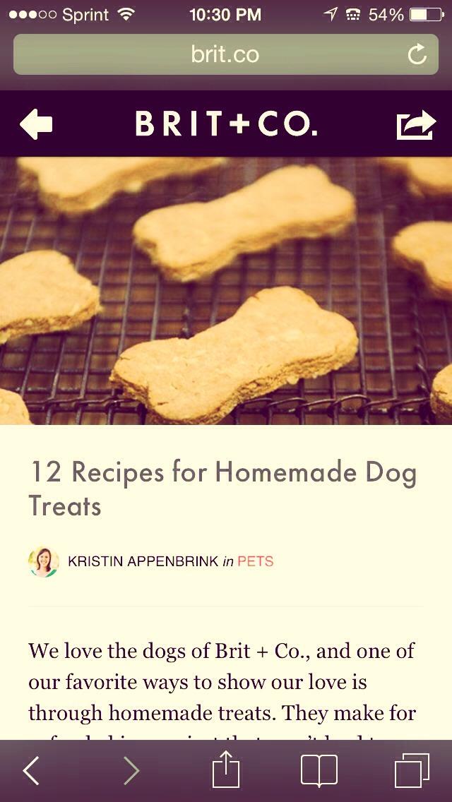 12 homemade dog treat recipes trusper