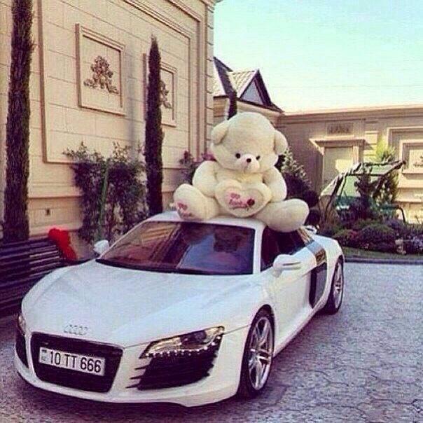 💙Cute Cars & Bears Ideas💜 Like 4⃣ More👍