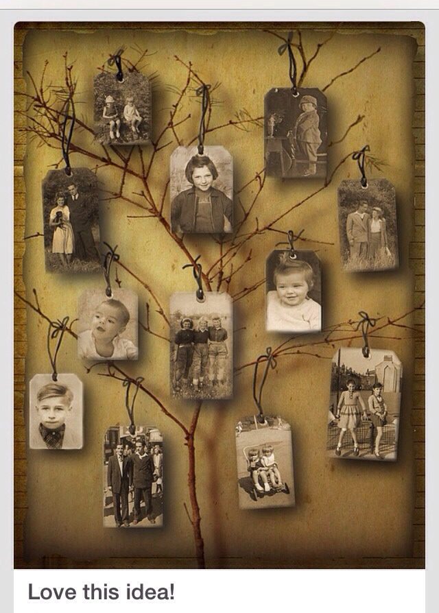 Coolest Family Tree!