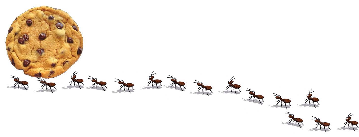 how to keep ants away from plants naturally