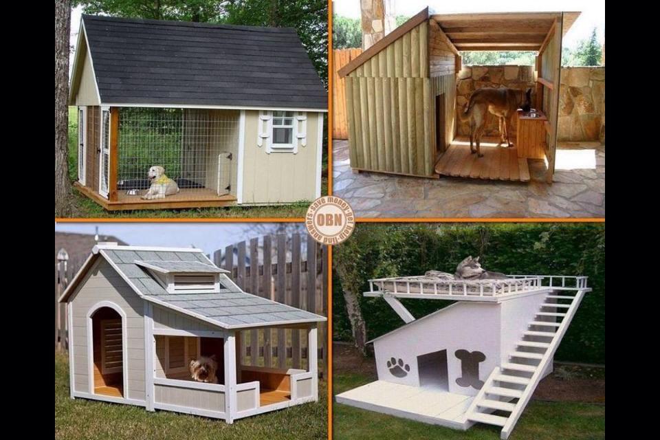 dog kennel designs dog kennel ideas xx