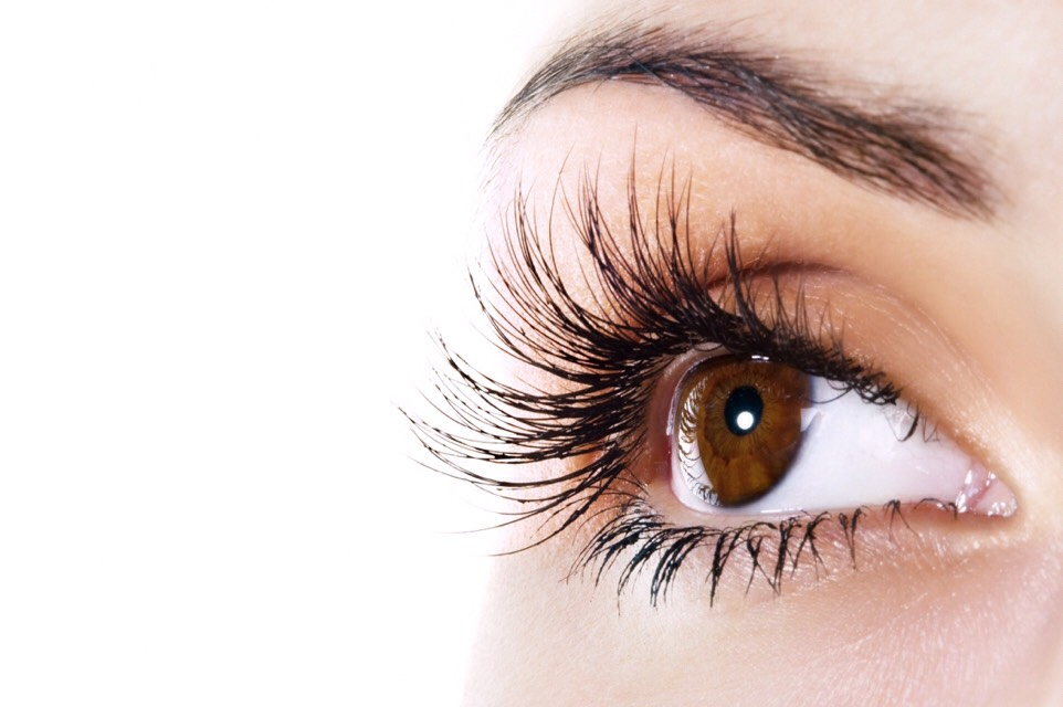 💁🏻How To Grow Your Eyelashes/Eyebrows Out Naturally!💁🏻#TipIt
