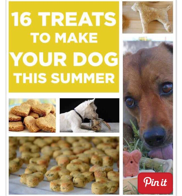 16 Treats To Make Your Dog This Summer 🌝🐶❤️