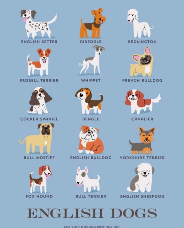 Dogs Of The World (grouped by their geographic origins)