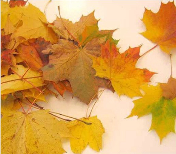 how to make fake leaves