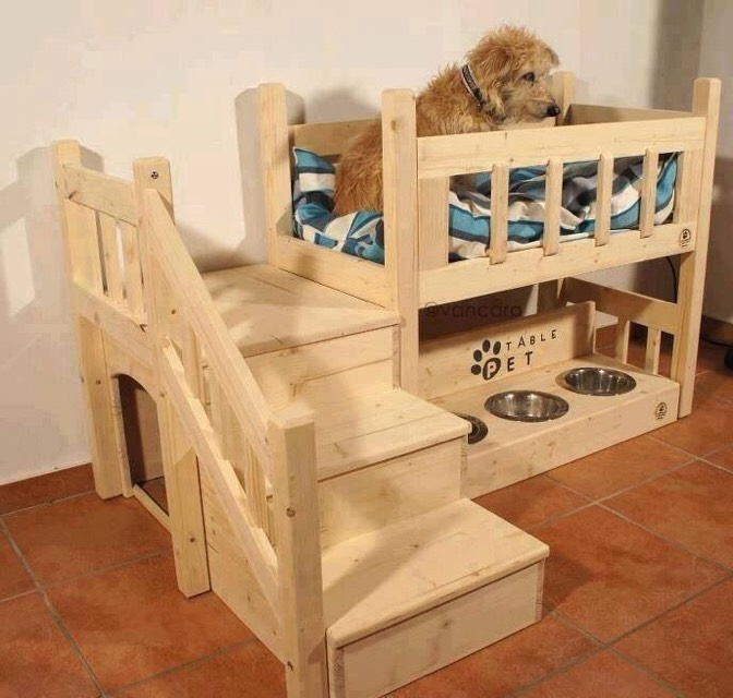 Doggy Beds +gates