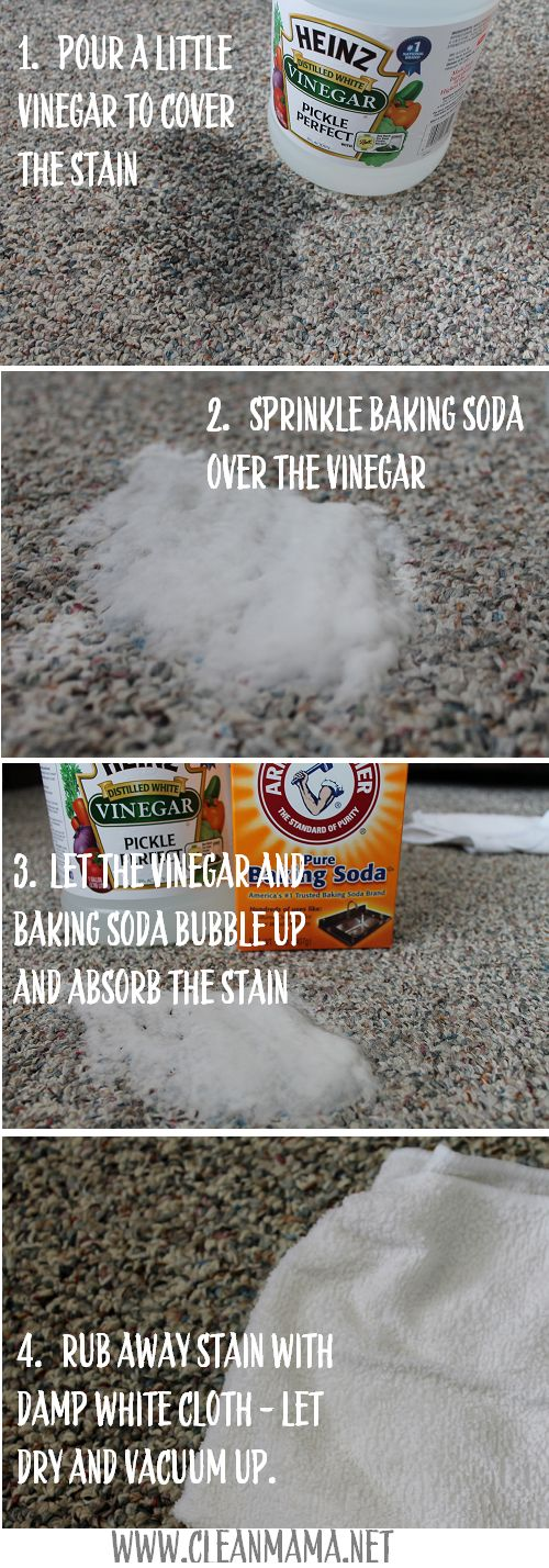 Get Rid of Carpet Stains! As EASY As 1,2,3!