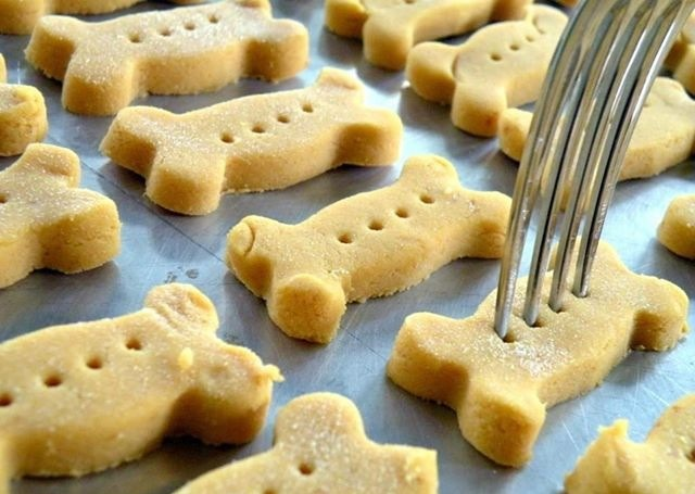 🐶DIY Pumpkin Dog Treats! Money Saver And Healthier For Your Pup!🐶