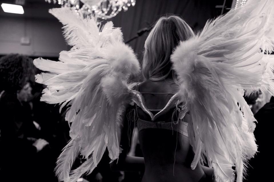Diy Angel Wings Diy Victoria's Secret Angel