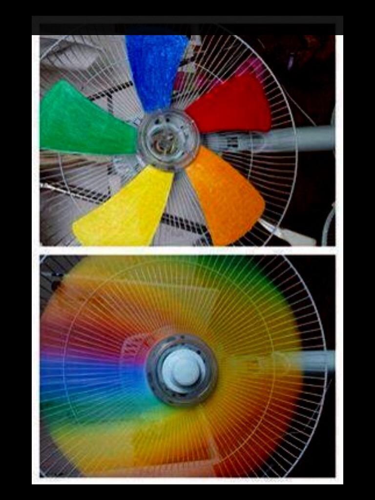 Rainbow Fan Trusper