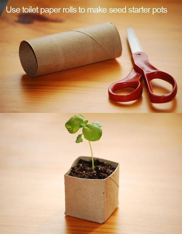 Use toilet paper roll to make seed starter pots trusper for How to use toilet paper rolls