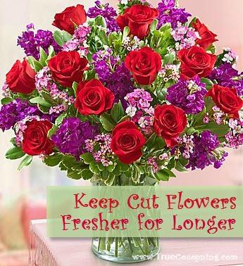 How To Keep Your Cut Flowers Fresher Longer Trusper